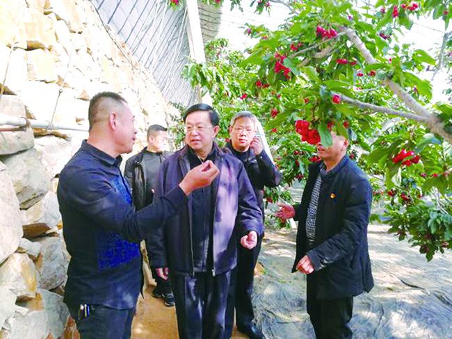 区委书记刘维木在扶贫项目现场2.jpg