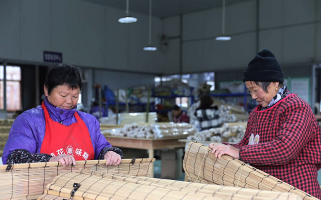 安徽舒城县发展特色农业扶贫